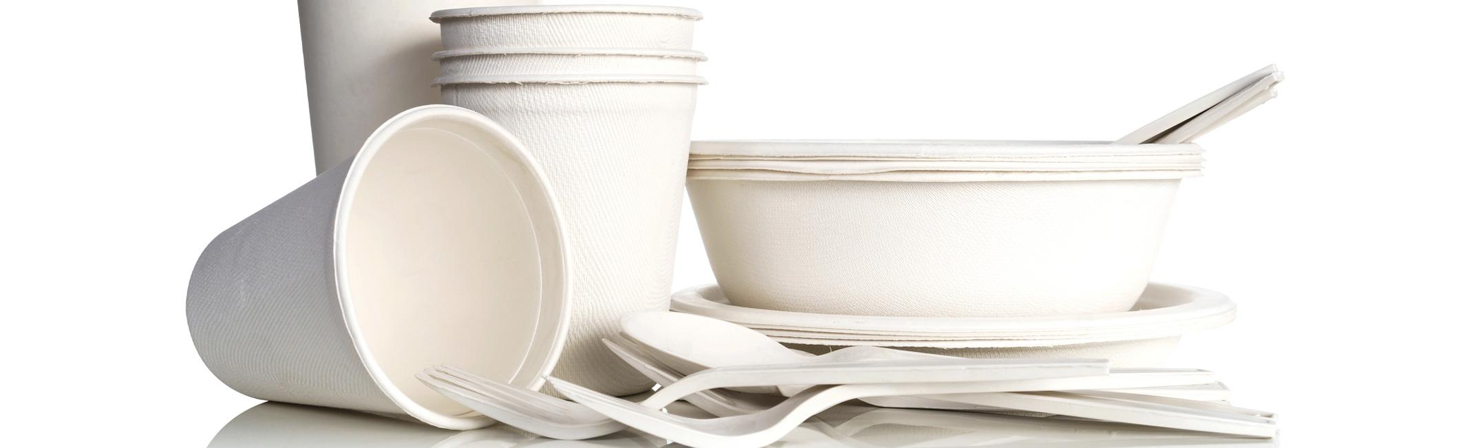 0996935a9ebe Disposable Kitchenware - Gordon Food Service Store